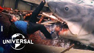 10 Dangerous Shark Attacks on People