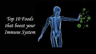 Top 10 Foods That Boost Your Immune System | Immunity Boosting Foods  | How to Increase Immune Power