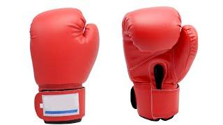 Top 10 Best Boxing Gloves 2021