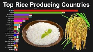 Top Rice Producing Countries 1960 to 2019