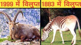 दुनिया की 10 विलुप्त प्रजातिया | Top Extinct animal and bird species information in hindi
