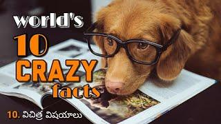 Top 10 intresting facts in the world | crazy facts | Amazing facts | telugu