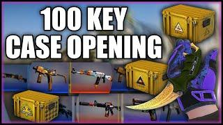 I UNBOXED 100 CS:GO Cases in 2020! Was It Worth IT? (Prisma 2, Breakout and More!)