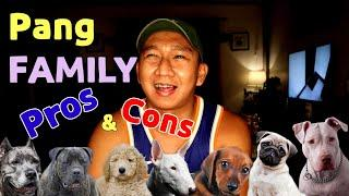 Top 10 Dog Breeds For Family
