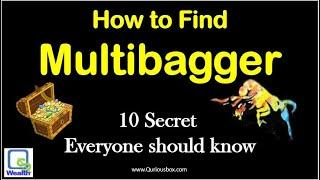 How To Find Multibagger Stock | Multibagger stocks | QuriousWealth