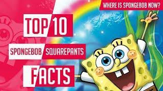 Top 10 Amazing Spongebob Squarepants Facts | What Is The Age Of Spongebob? | Hindi