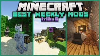 Top 20 New Mods Released for Minecraft 1.16.5 on Forge & Fabric This Week!