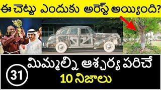 Top 10 Unknown Facts in Telugu   Interesting and Amazing Facts   Part 31  Minute Stuff