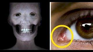 20 AMAZING Facts to Blow Your Mind! | Top Curious