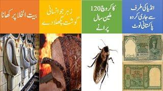 Top 10 facts about world || Part 4 || Urdu