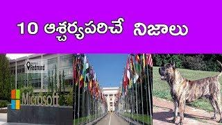 Amazing Facts In Telugu | Top 10 Interesting Facts In Telugu| Top 10 Unbelievable Facts In Telugu