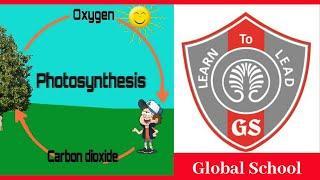 Global School Gurgaon | Best School In New Palam Vihar | Oxygen Cycle | Top 10 Schools In Gurgaon