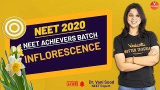 Inflorescence | Class 11 NEET Biology | NEET 2020 Achievers | Dr. Vani Ma'am | Vedantu Biotonic