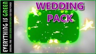 wedding pack love angel 1 Green Screen after effects Premiere pro Chroma Key Royalty Free