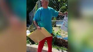 Philly Court Supervisor Fired After Tearing Down Signs, Saying Black Lives Don't Matter   NBC10