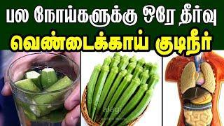 வெண்டைக்காய் நீர் நன்மைகள் |Top Health benefits of drinking okra water Tamil | ladies finger water