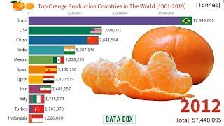 Top 10 Orange Production Country in The World