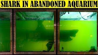 Top 10 Scariest Things Found in Abandoned Places