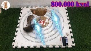 amazing idea - Membuat perangkap tikus mudah | | Top 10 piège à souris électrique