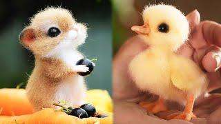 Animals SOO Cute! Cute baby animals Videos Compilation cute moment of the animals #1