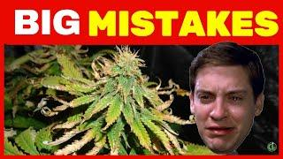 10 GROW MISTAKES That Can Ruin Your Plants