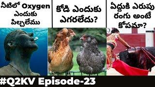 Top 10 Interesting and Unknown Facts In Telugu | #Q2KV Episode-23 | KranthiVlogger