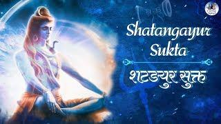 Shatangayur Sukta - The Wish Fulfilling Mantra - Make Your Any Wish Come true | Lord Shiva Mantra
