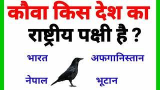 Top 10 Interesting gk question with answer | Gk question in hindi | Study Gk | #GK