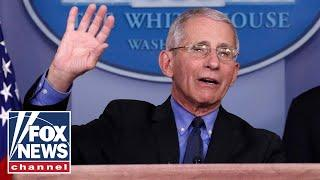 Dr. Fauci lashes out at media in White House press briefing