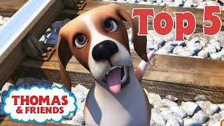 Thomas & Friends™ | Animals! | Thomas Top 5 | Best of Thomas Highlights | Kids Cartoon