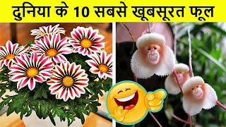 Most Beautiful and Strange Flowers of the World | दुनिया के 10 सबसे खूबसूरत फूल