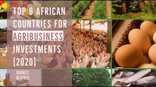 6 Best Agriculture countries in Africa, Best Business Ideas in Africa (2020)