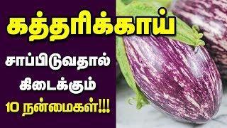கத்தரிக்காய் நண்மைகள் | Top 10 Health Benefits of  Brinjal Tamil |  Eggplant Benefits / Health Tips