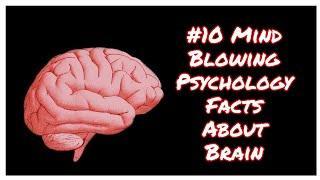 Top 10 Mind Blowing Psychology Facts About Human Brain | Human Brain | Brain Ideas