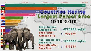 Countries Having Largest Forest Area (1990-2019) | Top 15 Countires Having Largest Forest Area