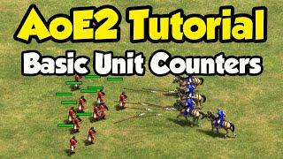 Beginner guide to counters in AoE2