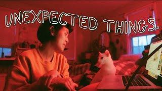 1.UNEXPECTED ⁄⁄ CatCreature
