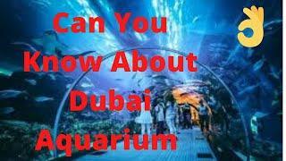 Top 10 Visiting Place In Dubai 2020 | Dubai Aqarium |☺☺