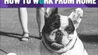 How to Work From Home - Top Ten Tips