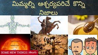 Top 10 Interesting and Unknown facts in  Telugu | Most Amazing & Interest facts| Mind blowing facts|