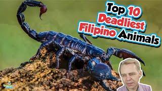 Top 10 Deadliest Animals in the Philippines - Danish Guy Reacts