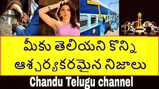 TOP 15 Interesting And Unknown Facts Telugu | Amazing Facts Telugu | CTC Telugu Facts | Telugu badi