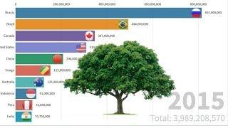 Top 10 Forest Land Countries Area in The World 1990-2015