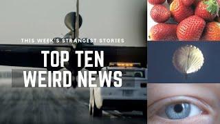 TOP TEN WEIRD NEWS #23