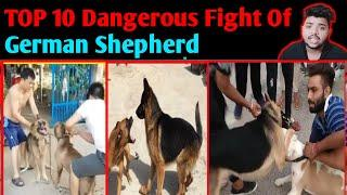 TOP 10 dangerous Fight of German Shepherd in Hindi | GSD Real Fight - Dogs Biography
