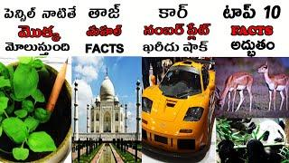 Top Interesting Facts in Telugu | Unknown and Amazing Facts in Telugu |Top10 Facts in Telugu | FACTS