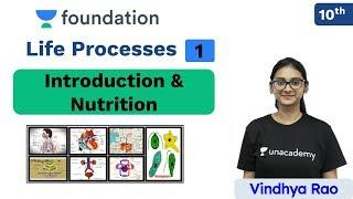 CBSE Class 10: Life Processes - L 1 | Biology | Unacademy Foundation | Vindhya Ma'am