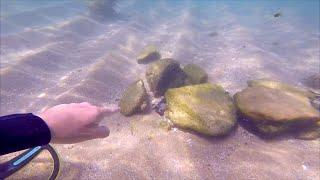 Metal Detecting UNDERWATER Found GOLD what's that BETWEEN the ROCKS!!