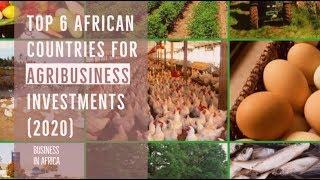 Top 6 Countries for AgriBusiness In Africa(2020), business ideas in africa, doing business in africa