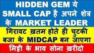 Zero debt smallcap stock market leader | multibagger stocks 2020 india | best shares to buy now